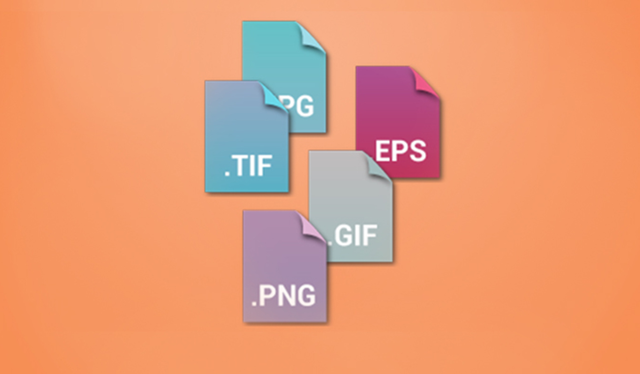 What are different file types